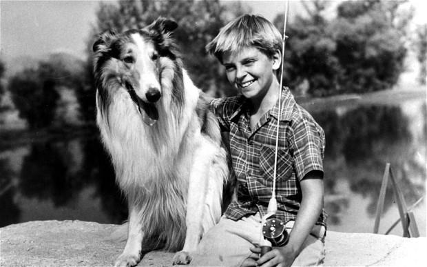 Lassie_15.jpg