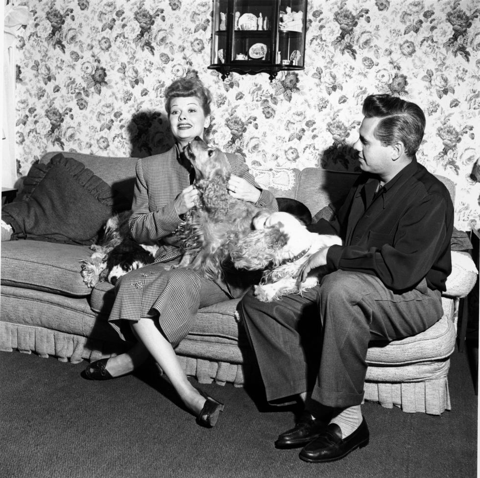 lucille-ball-1950-desi-arnaz-and-dogs-58822-90746.jpg