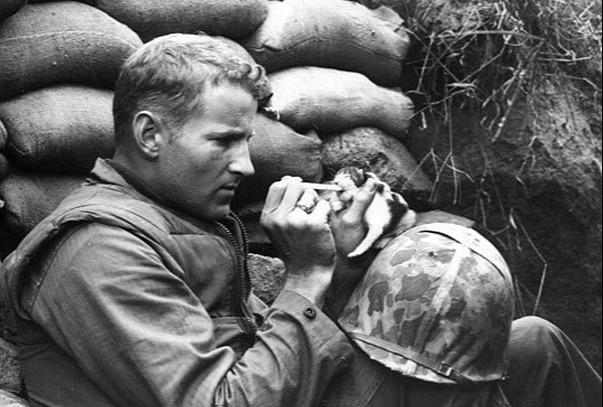 heartwarming war photos 3