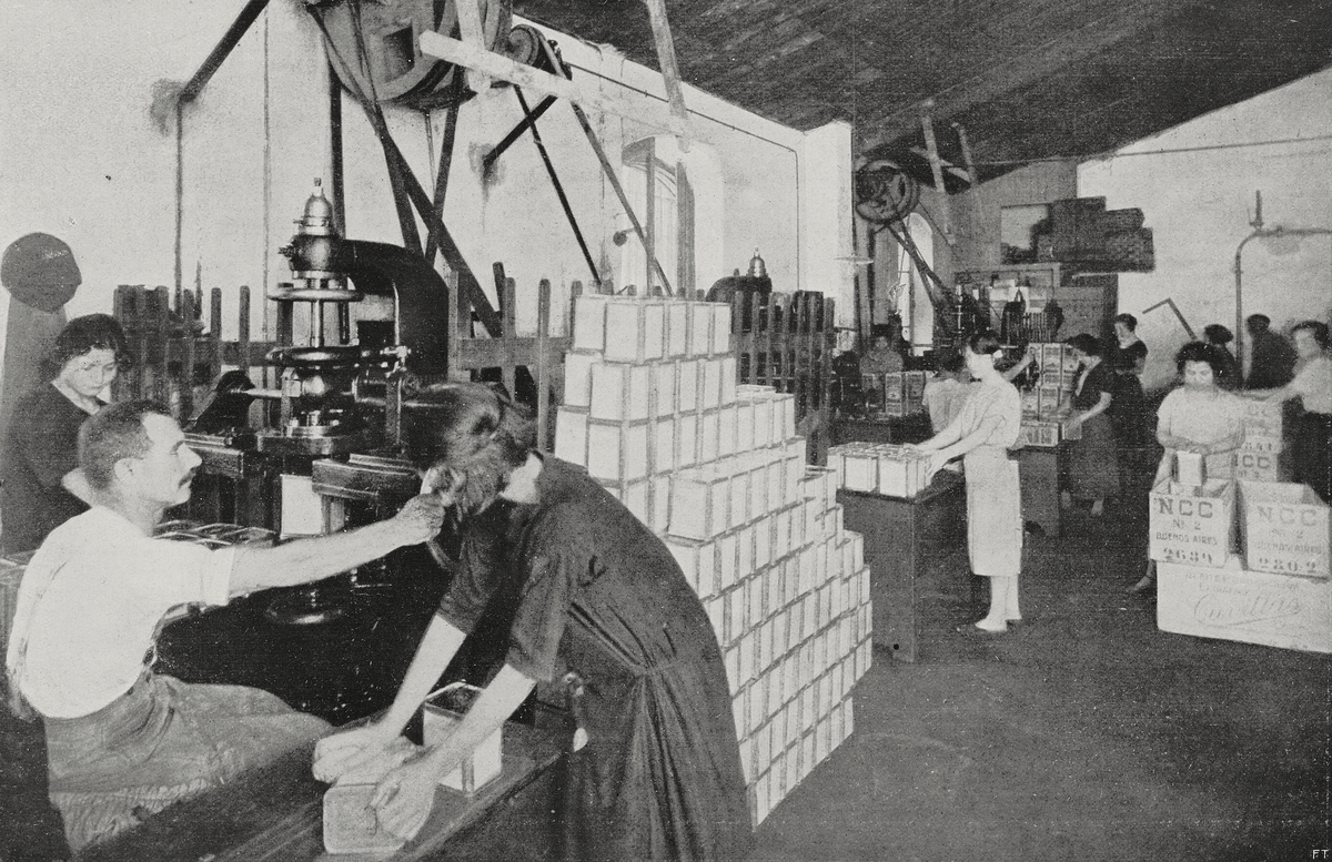 Women working in packaging department, Sanremo 1926