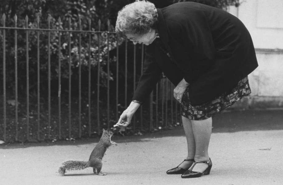 Cleary feeding a squirrel
