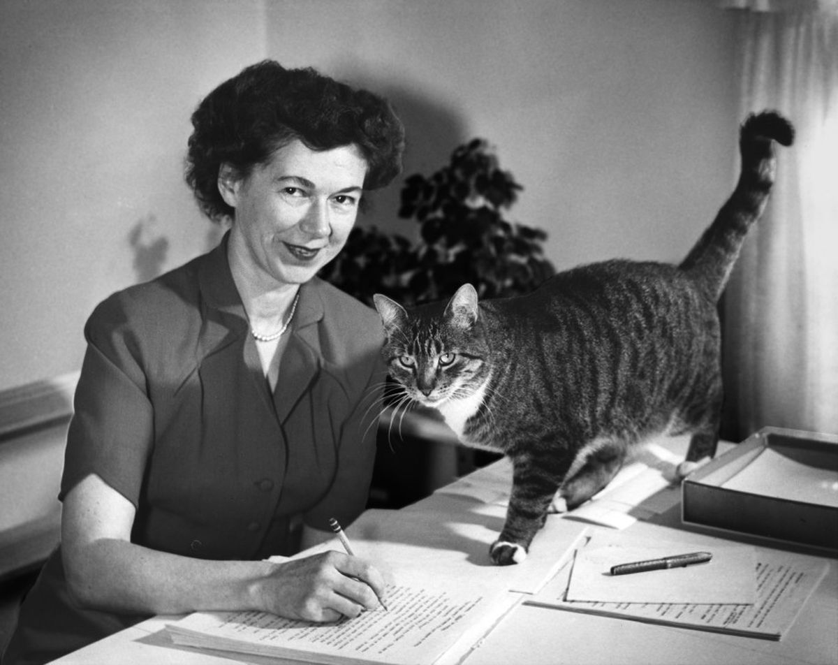 Cleary writes with a cat on her desk