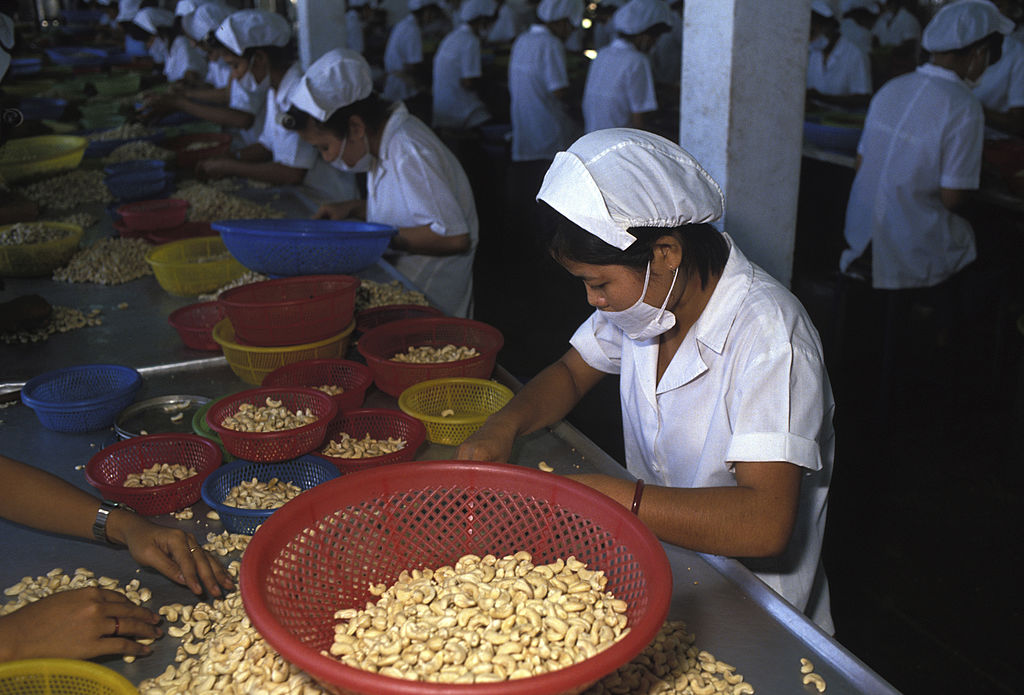 Woman sorting cashews