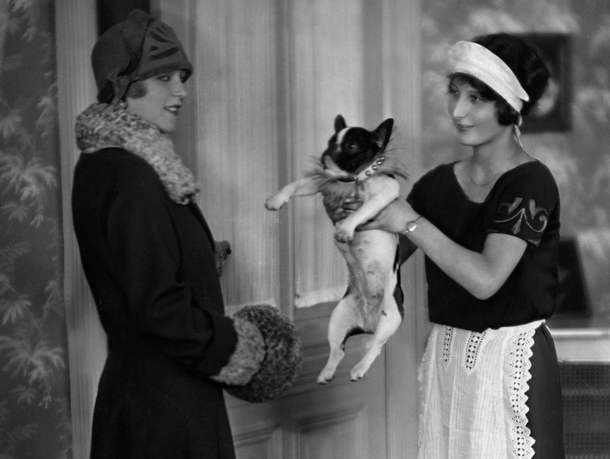 Maid giving the pit bull for a walk - 1925