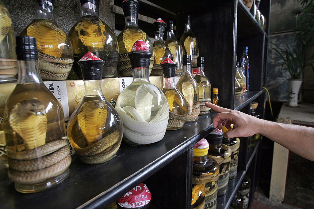 Bottles of snake wine on the shelf