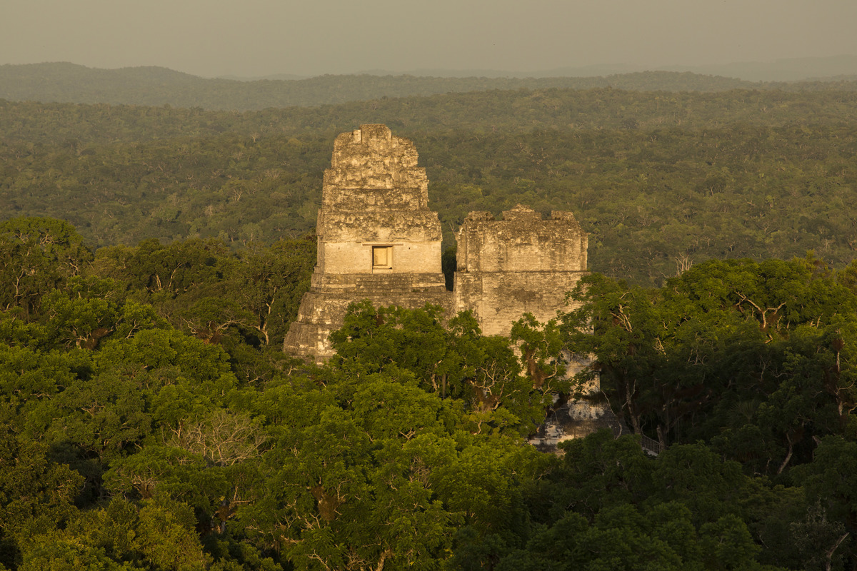 Temples I and II from Temple IV in the Mayan archeological site of Tikal National Park, Guatemala.