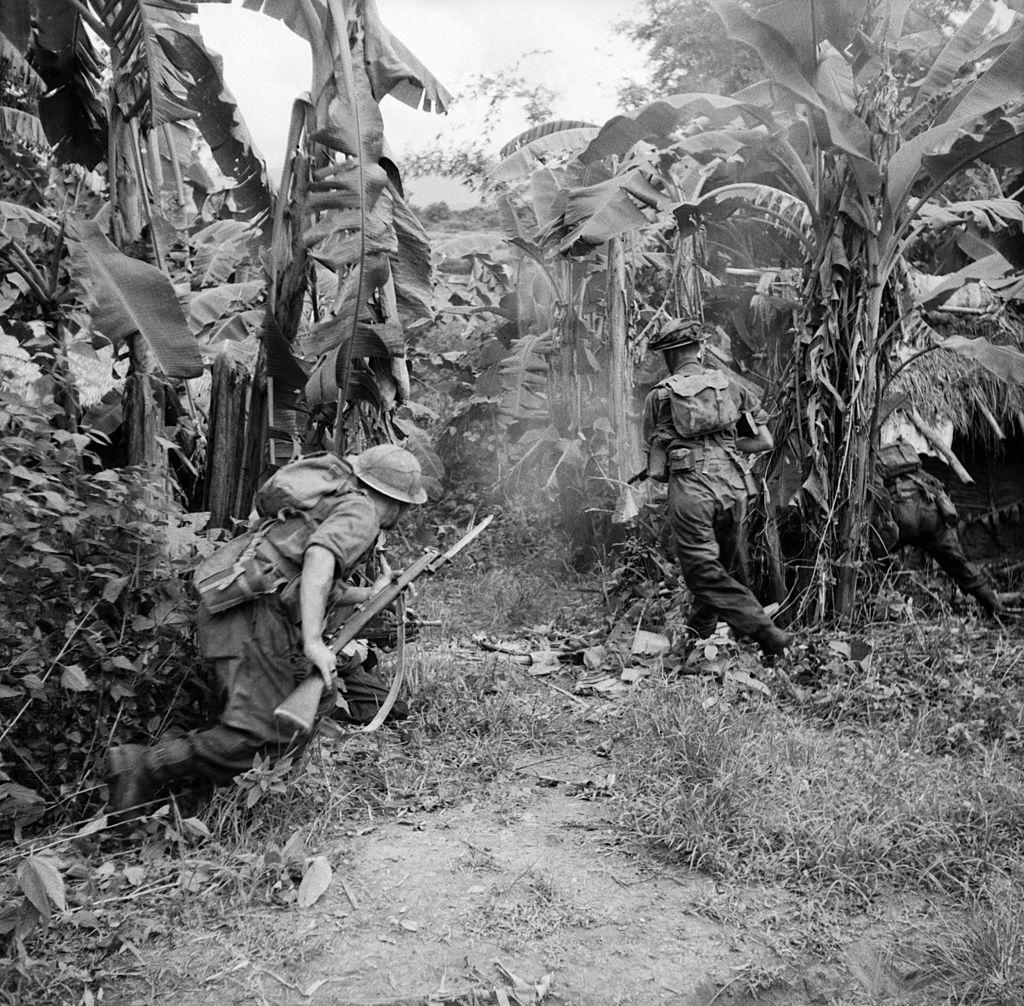 soldiers advance through a banana grove