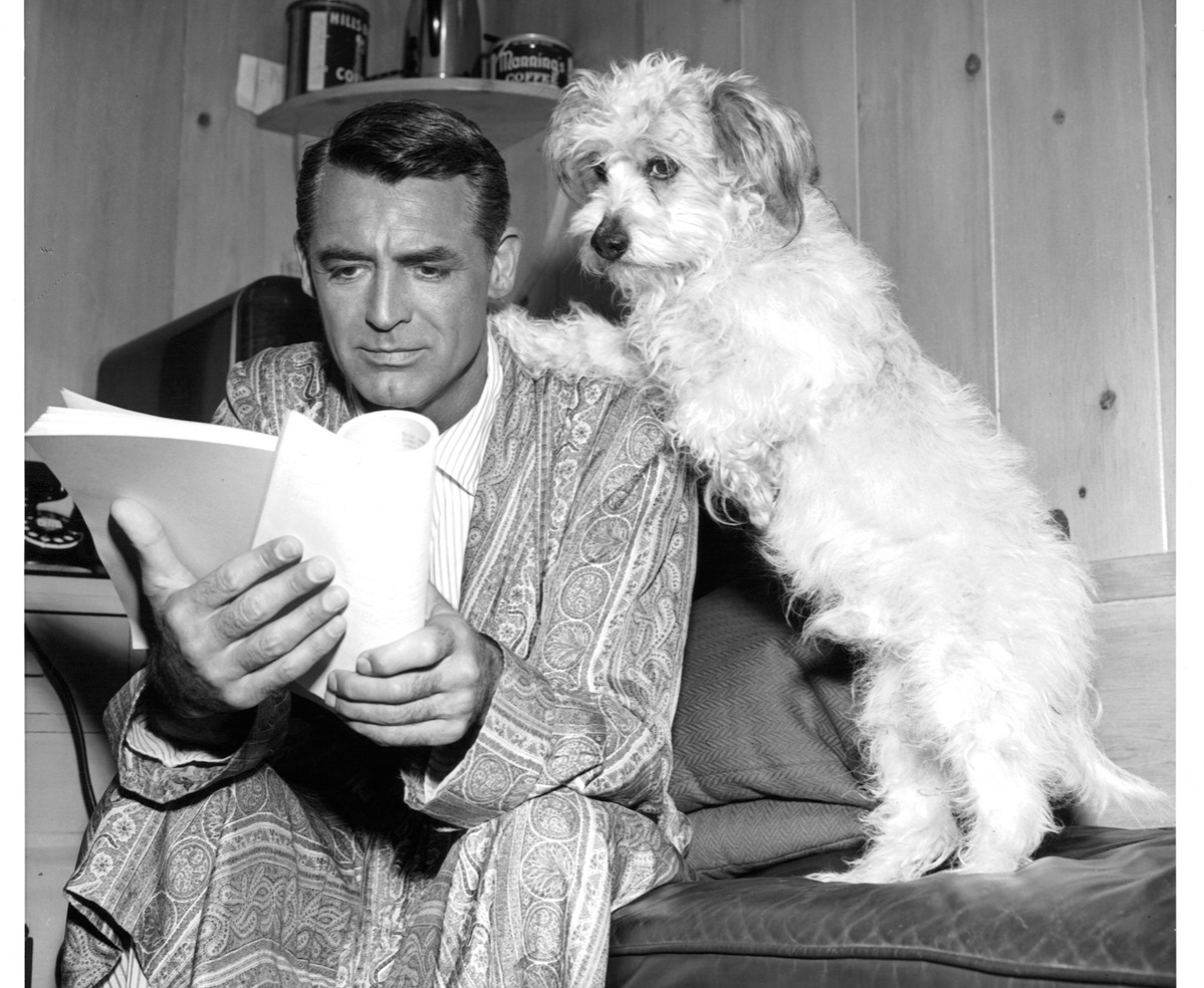 Cary Grant reads his script with a dog on set of the film 'Dream Wife', 1953.