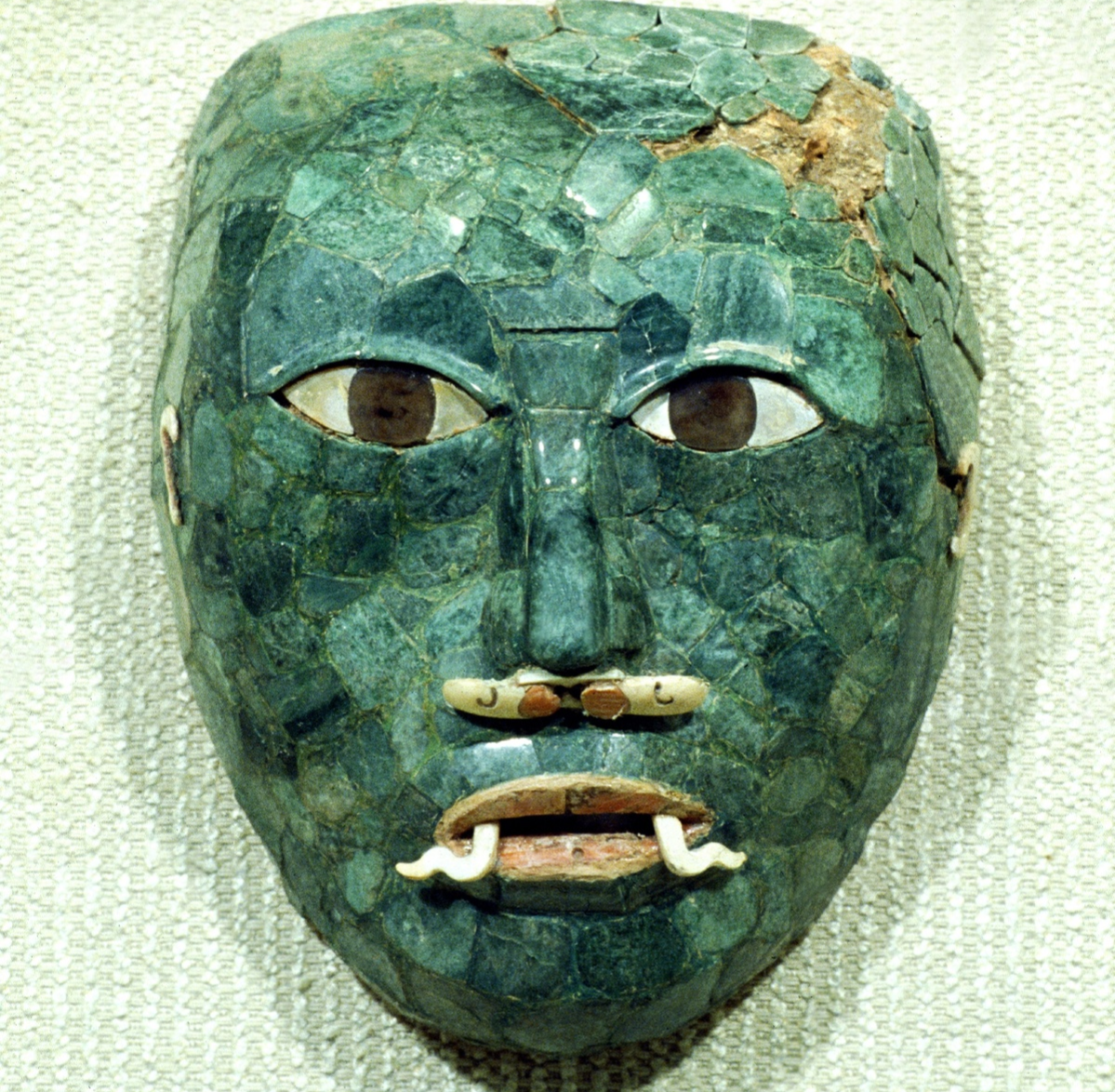 Discovered in a sepulture of structure 2, it has teh particularity to have two mother-of-pearl fangs at the corners of the mouth. Museum of Campeche, Mexico.
