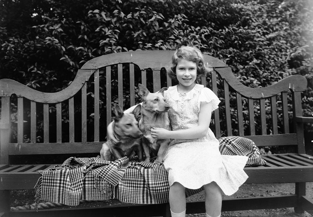 GettyImages-3322620 Princess Elizabeth sitting on a garden seat with two corgi dogs at her home on 145 Piccadilly, London