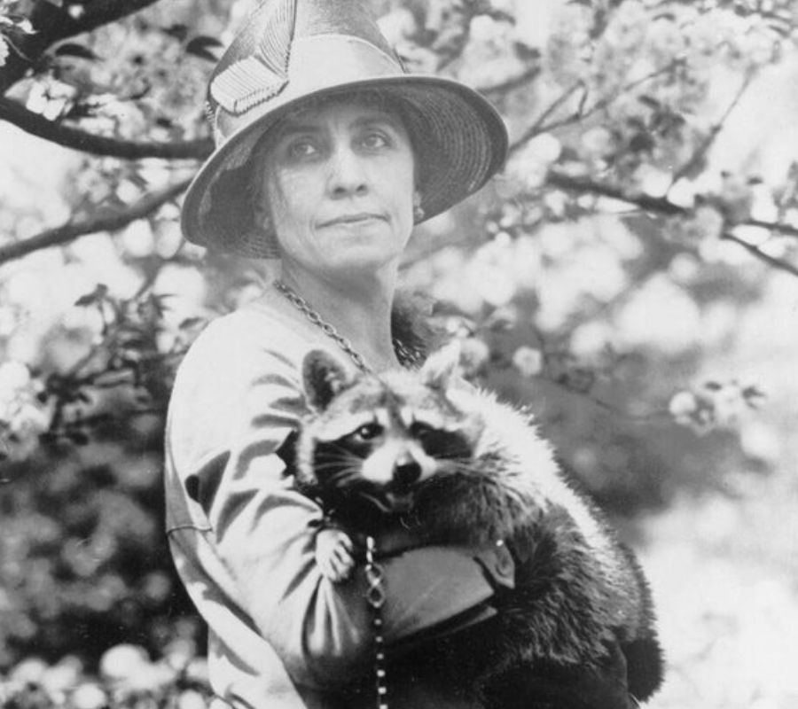 first lady and her raccoon
