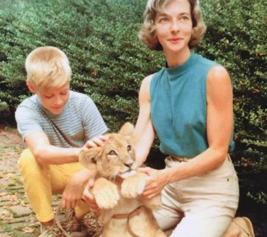 kid mom lion