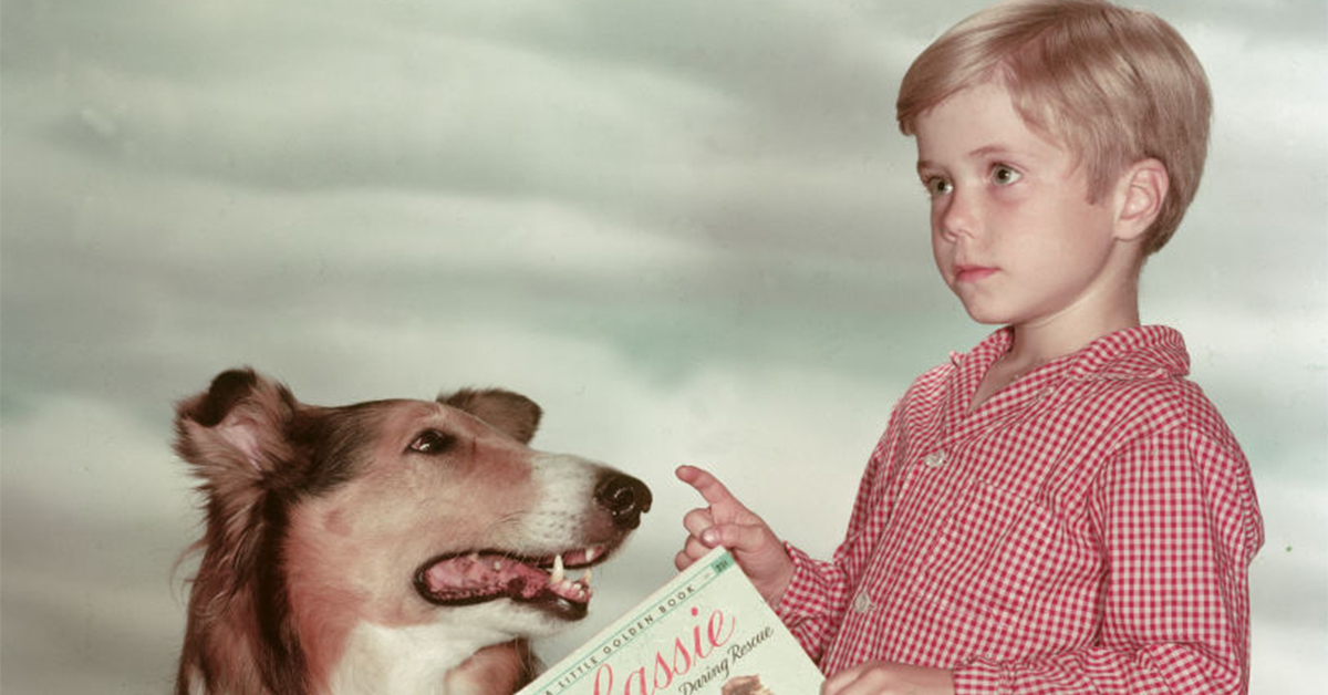 jon provost as a child holding a copy of the lassie book with the lassie dog