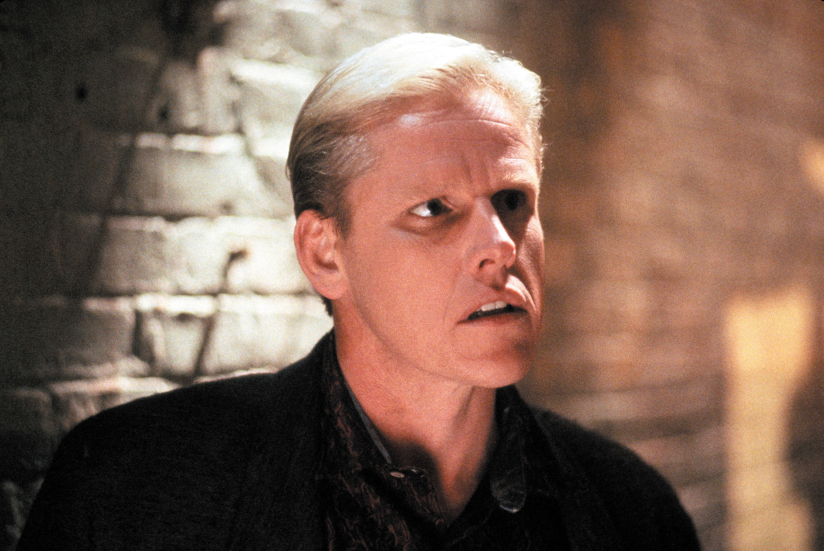 garey busey starred in lethal weapon and walker texas ranger