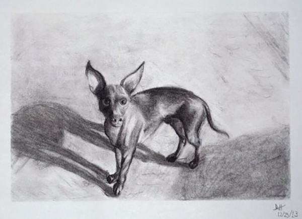 Drawing of Techichi