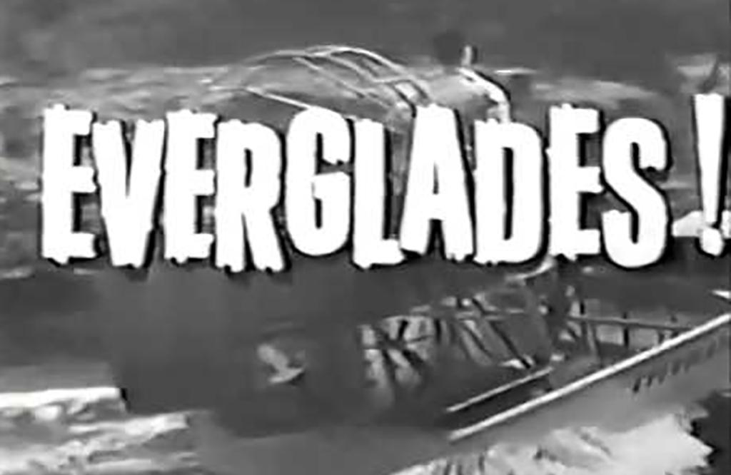 Everglades opening