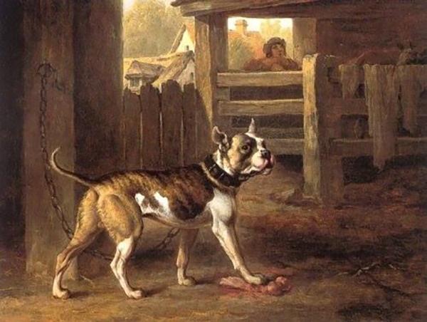 old english bulldog painting by Philip Reynagla, 1790