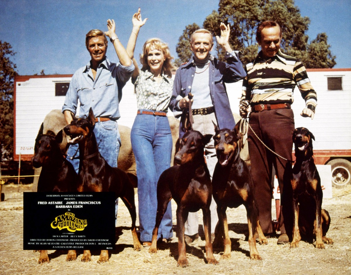 Barbara Eden poses with doberman dogs next to James Franciscus, Fred Astaire, and Jack Carter.