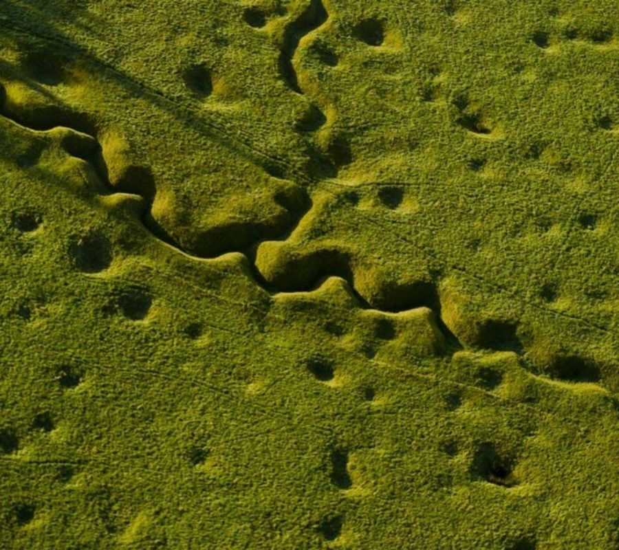 trenches over grown with nature