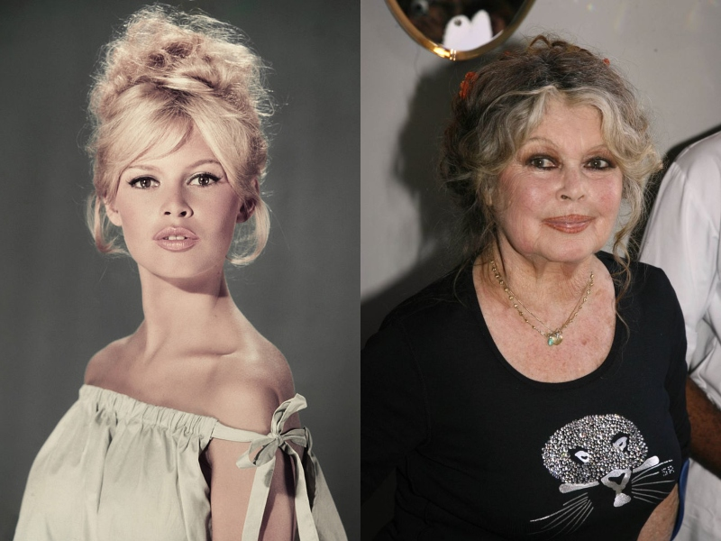 Brigitte Bardot wears her hair up in both her youth and later in life, when her blonde-hair grayed.