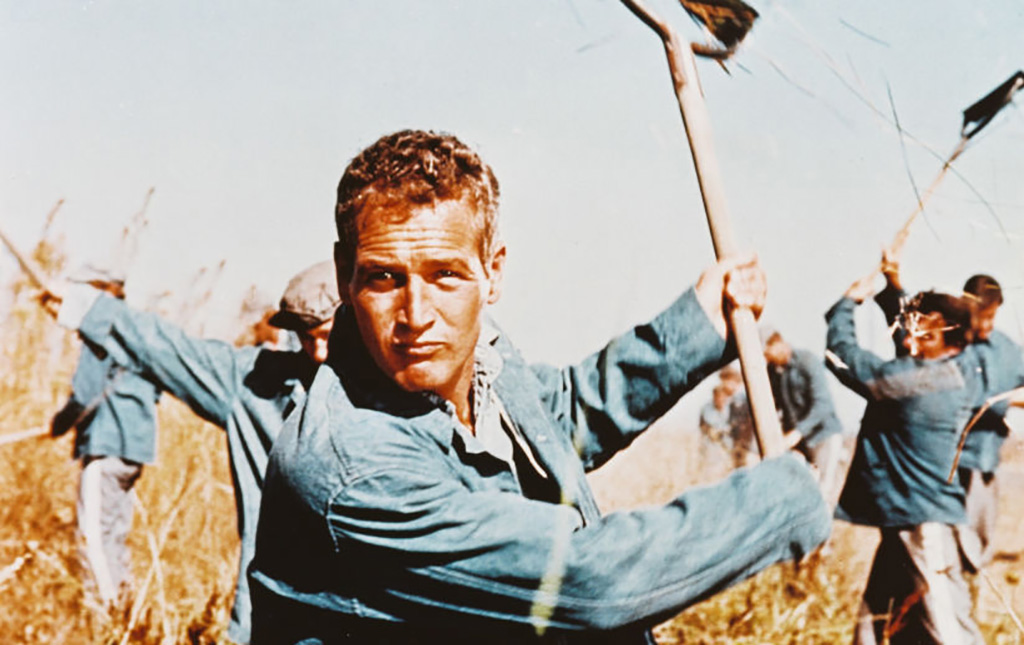 Paul Newman doing work