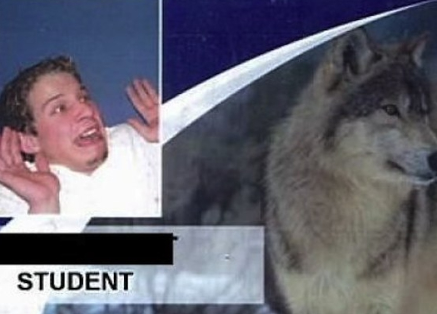 kid and a wolf