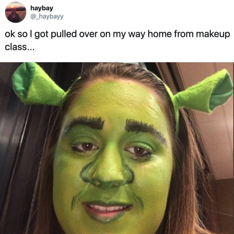 a girl pulled over dressed up like Shrek