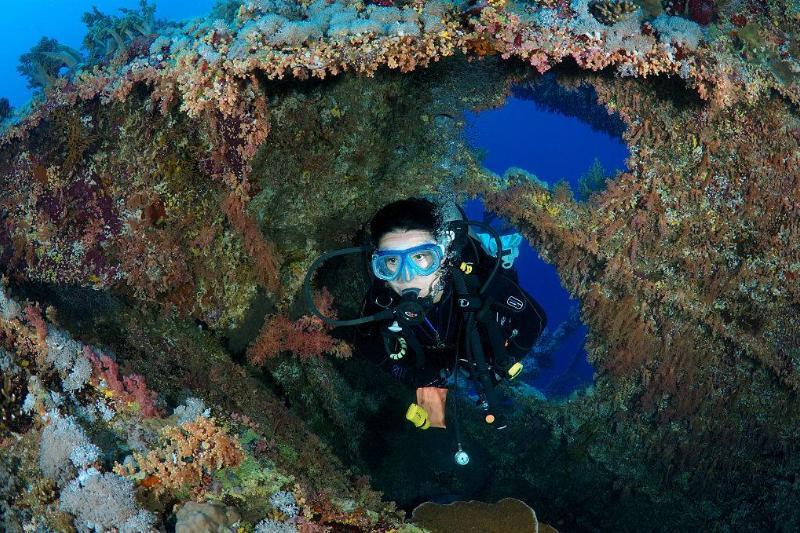 Diver swimming through shipwreck
