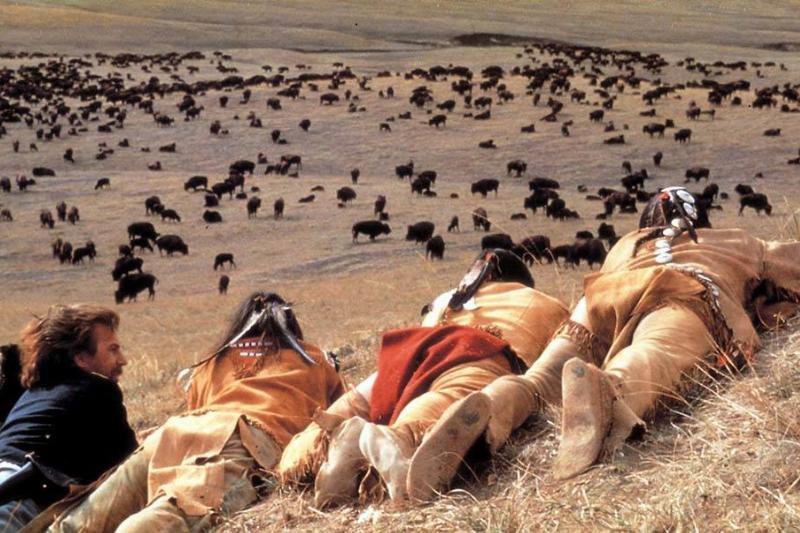 Costner looking at a bison herd
