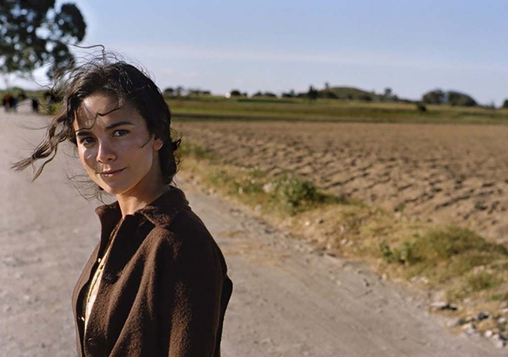 Alice Braga as Terry
