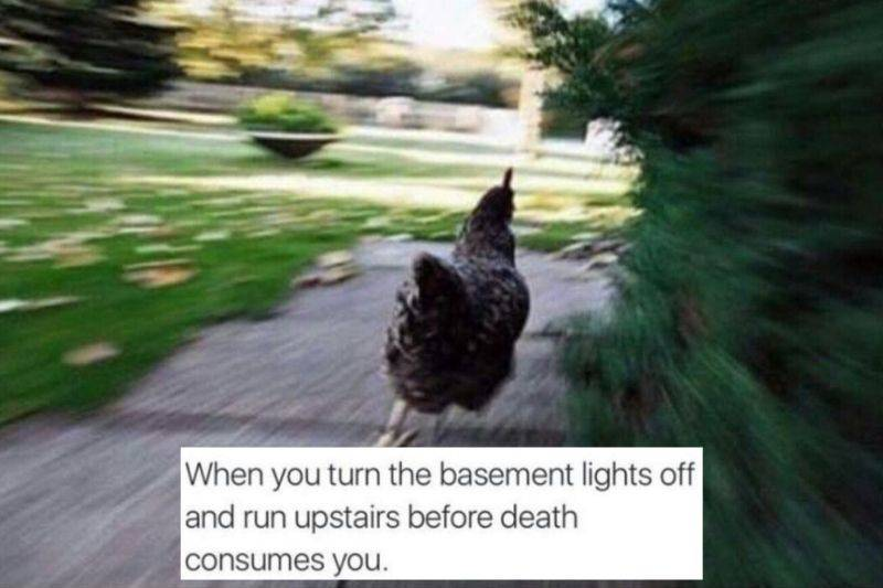 running up the basement stairs before death consumes you