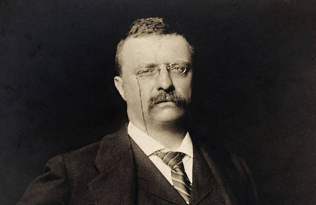 Portrait of Roosevelt