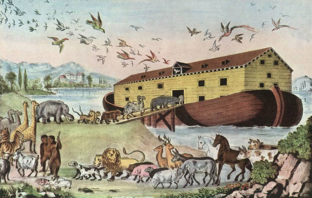 Picture of animals and the ark