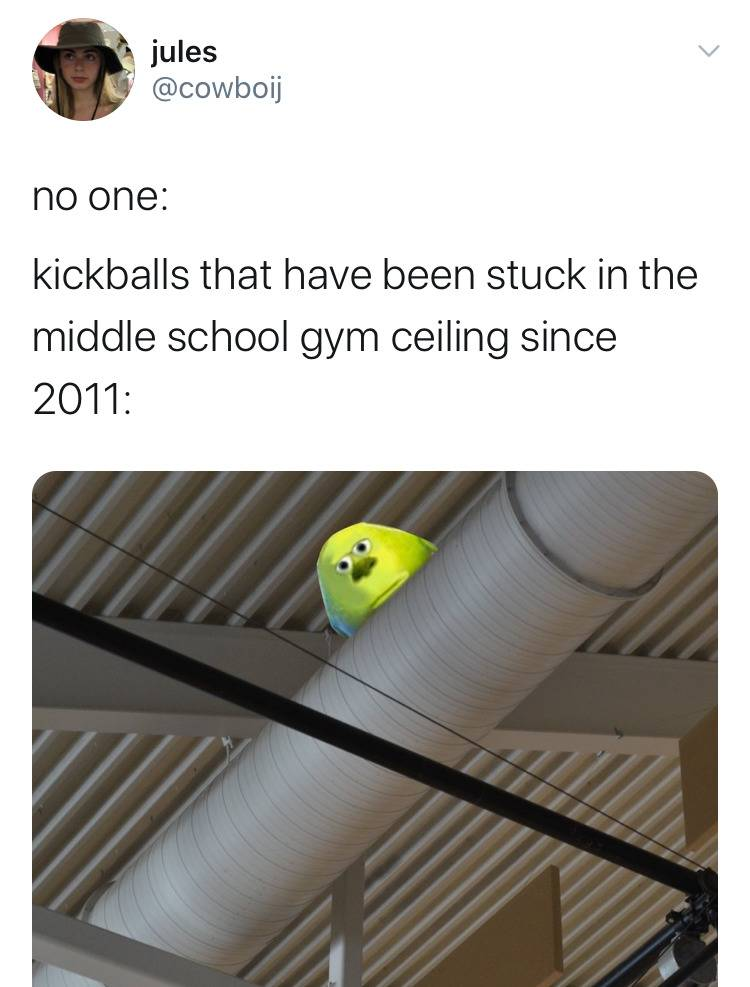 photo of mike wasowski's head in rafters captioned: the kickballs that have been stuck in the middle school gym ceiling since 2011