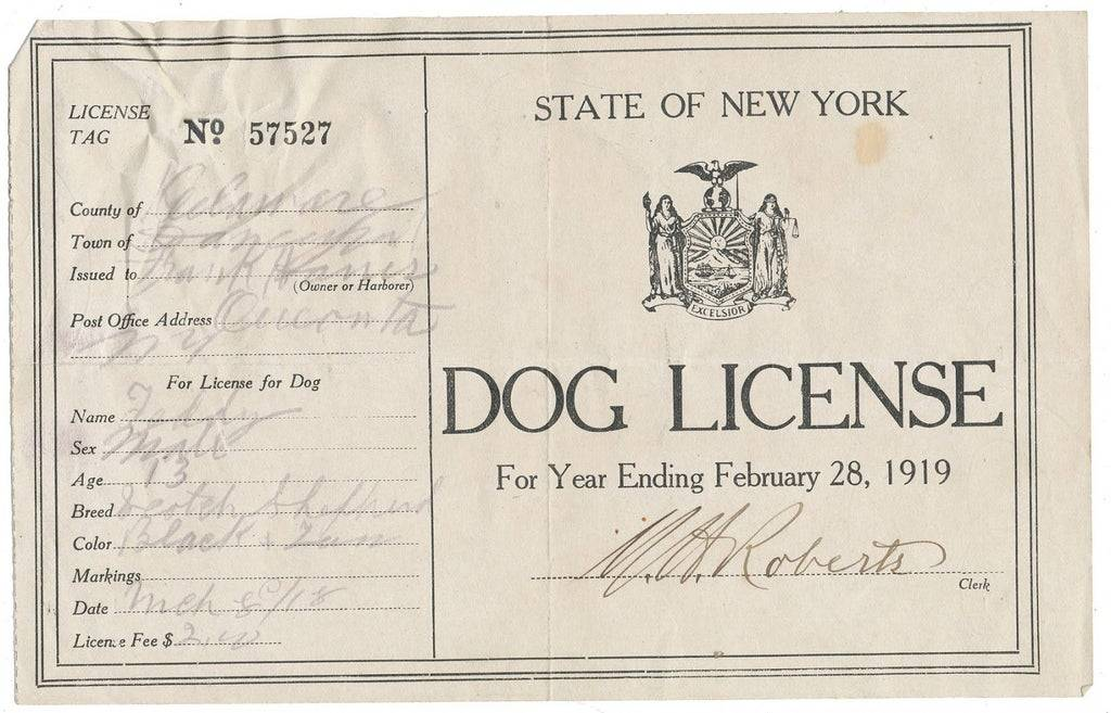 a dog license from 1919