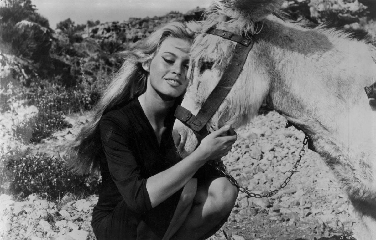 Brigitte Bardot Found Solace Playing Flamenco Guitar