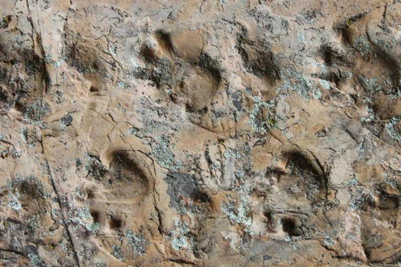 Picture of footprints