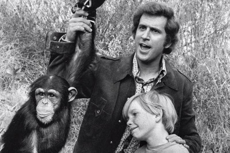 Me And The Chimp Was A Bust