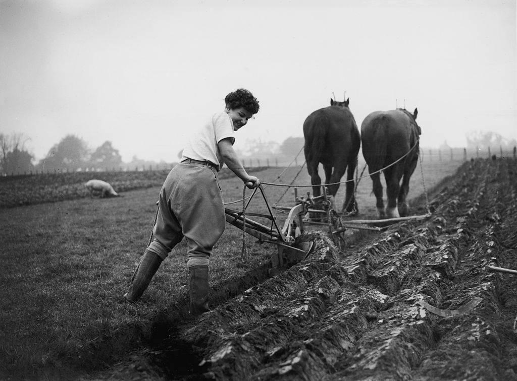 Woman plowing fields