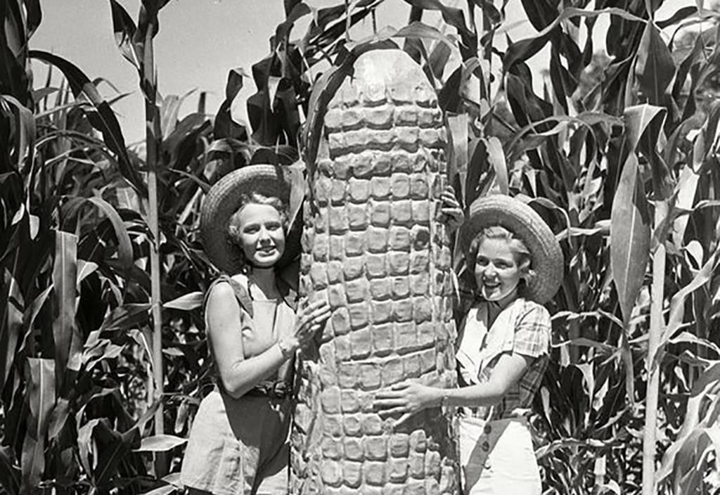 Girls next to corn