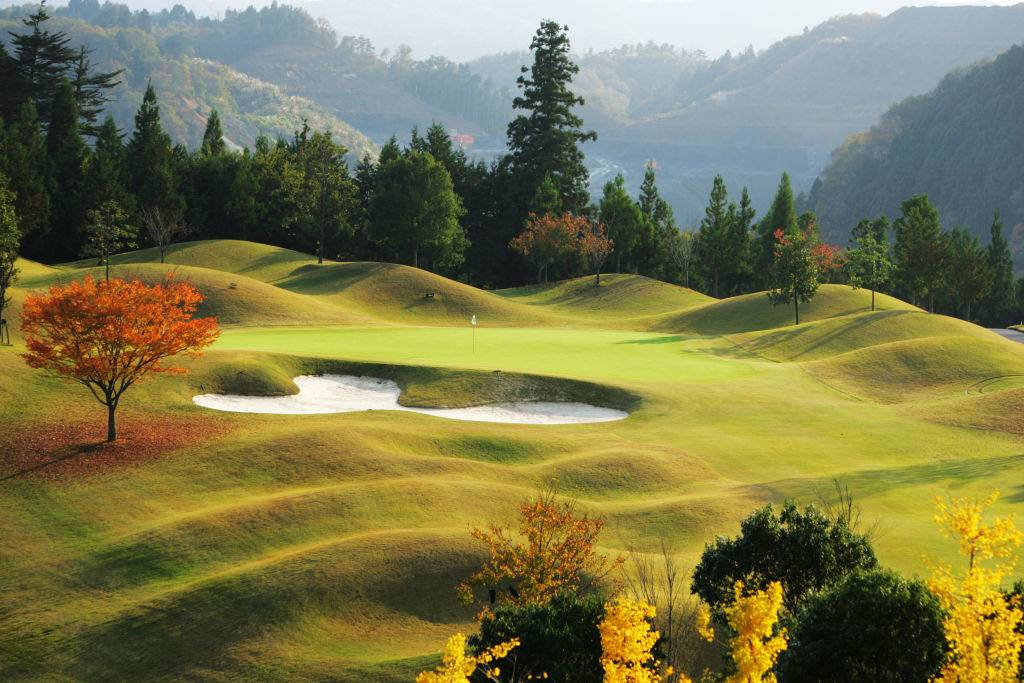 Picture of a golf course