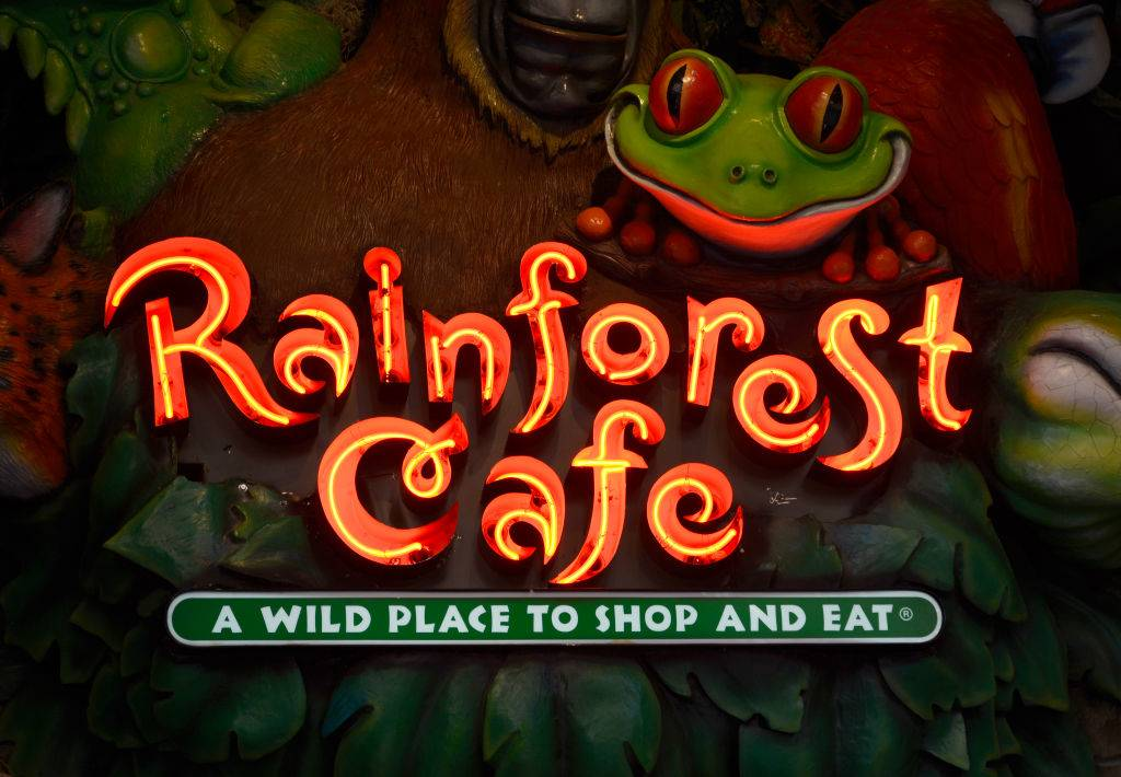 Picture of the Rainforest Cafe