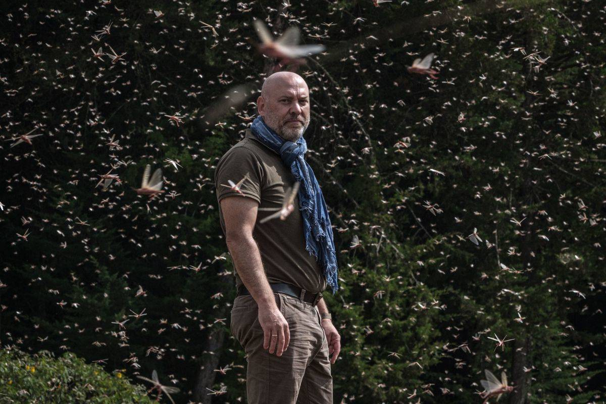 A man stands in a field while locusts swarm around him.