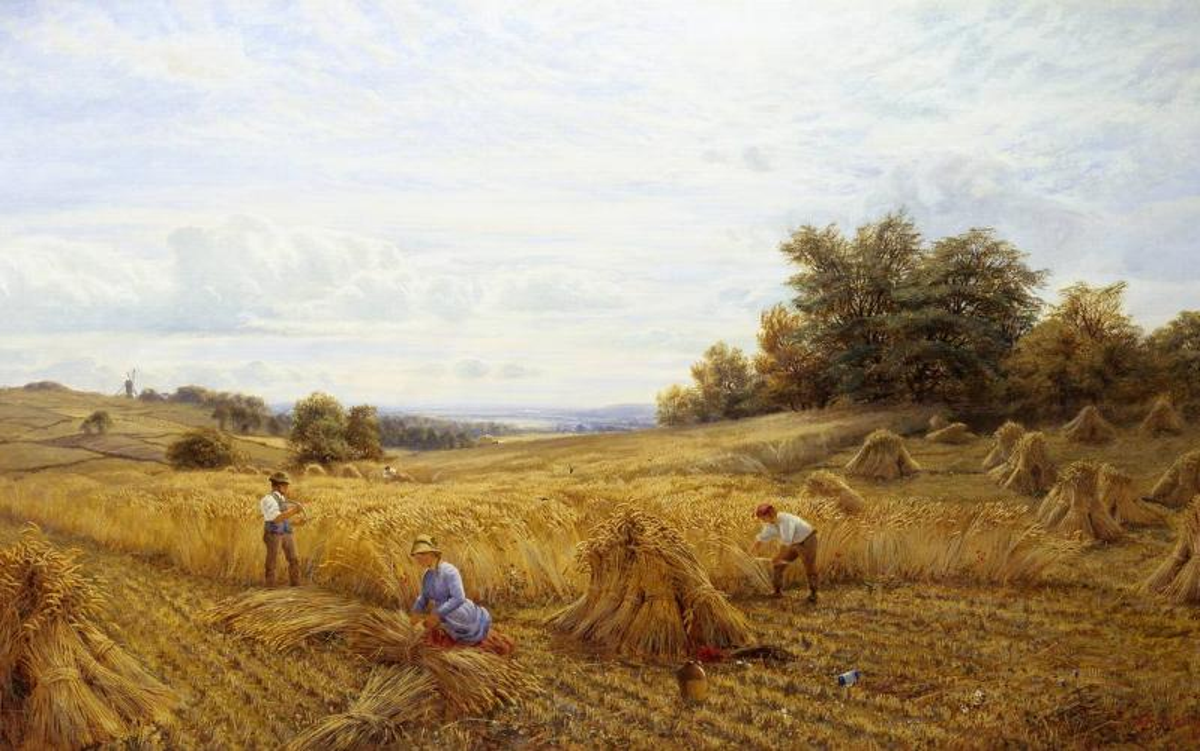 19th-century-harvest