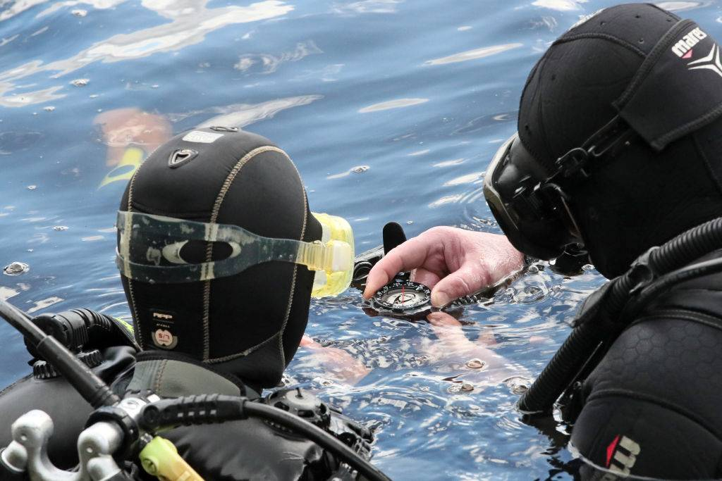 Picture of divers