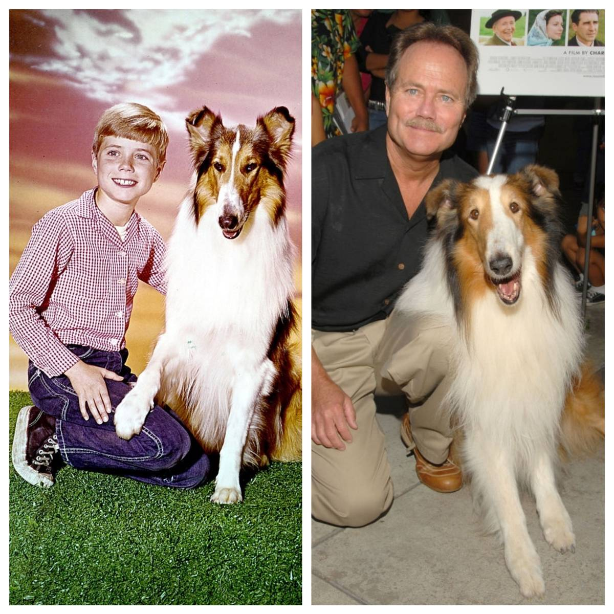Picture of Jon Provost
