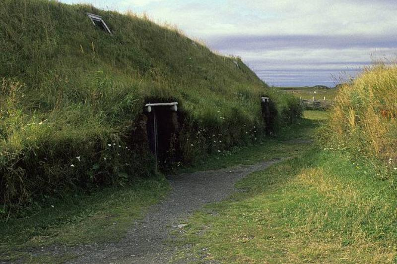Picture of viking home