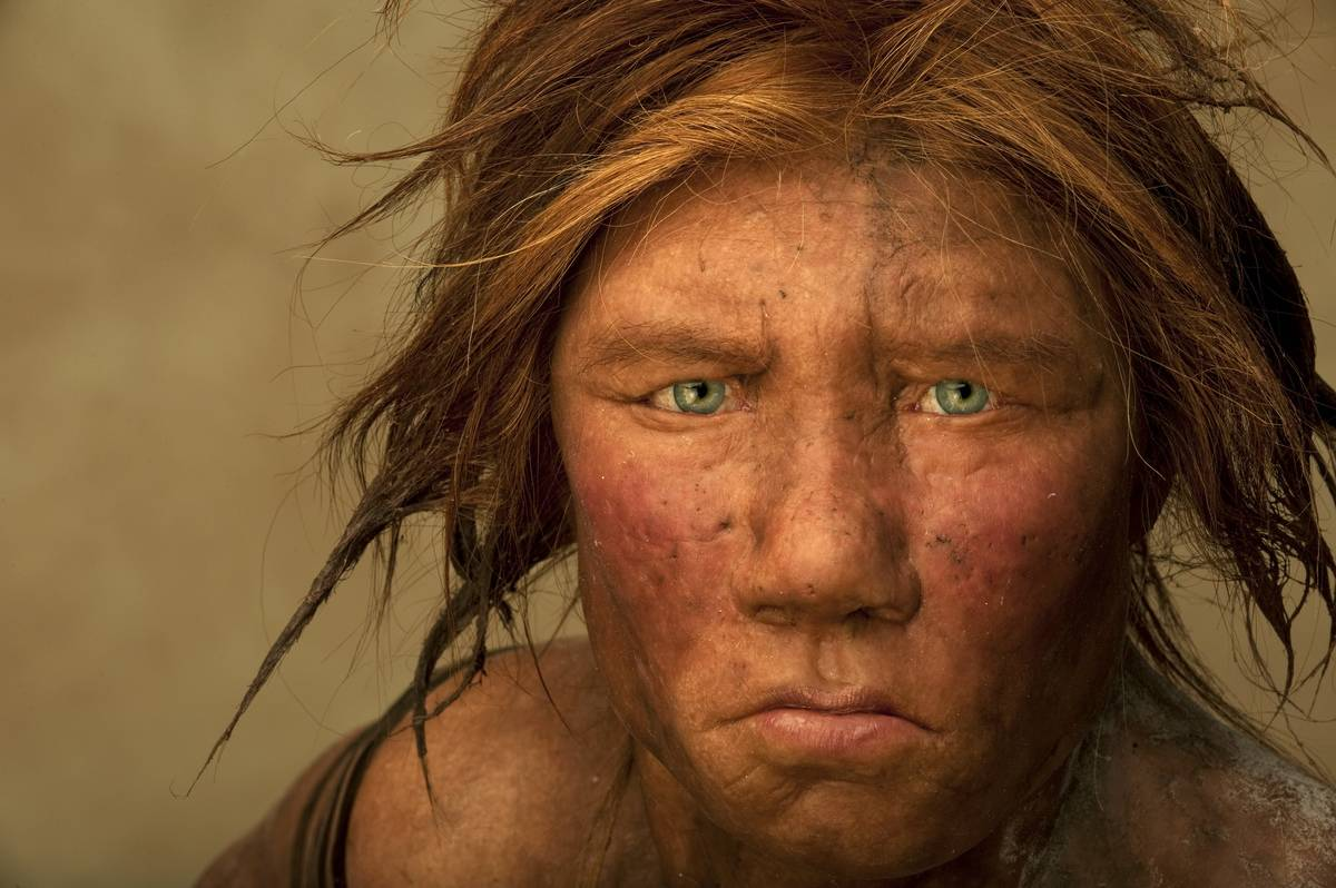 This model shows the face of an ancient human woman.