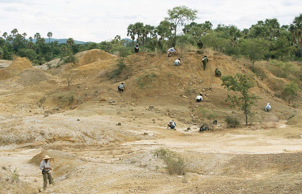 looking for fossils in Myanmar