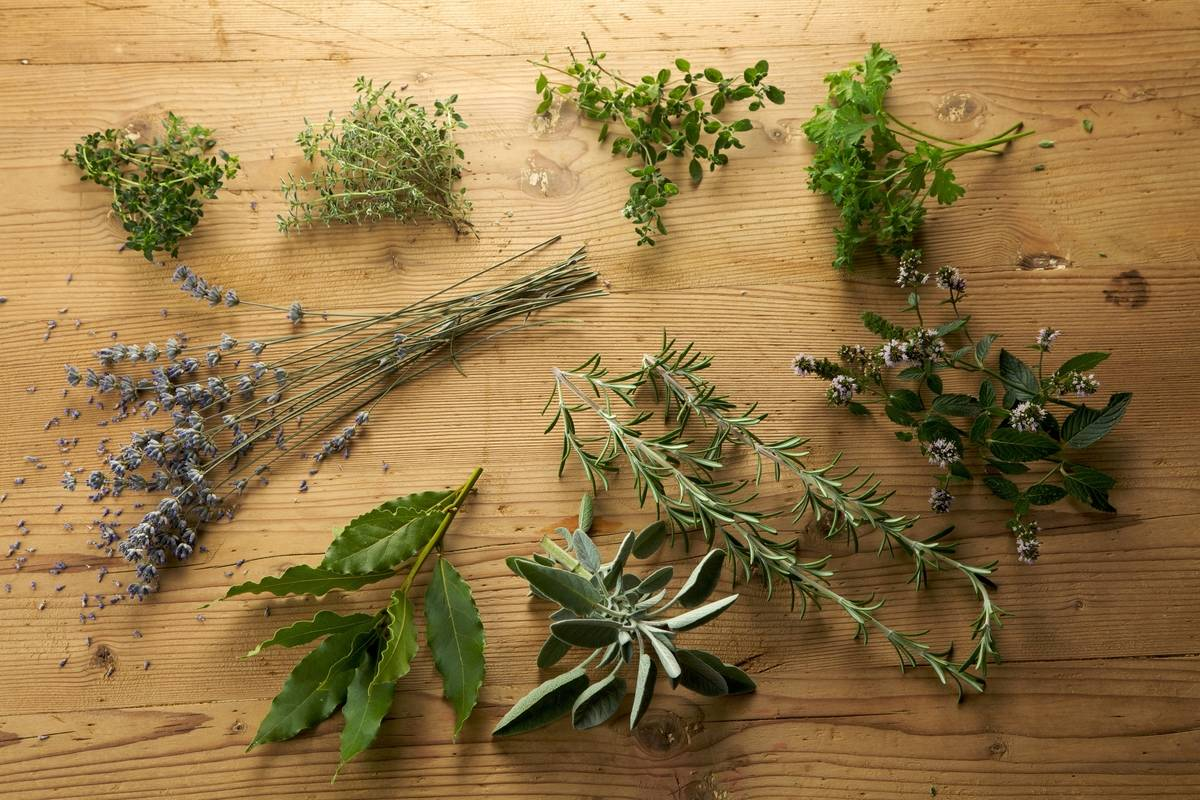 A variety of herbs are on a cutting board.